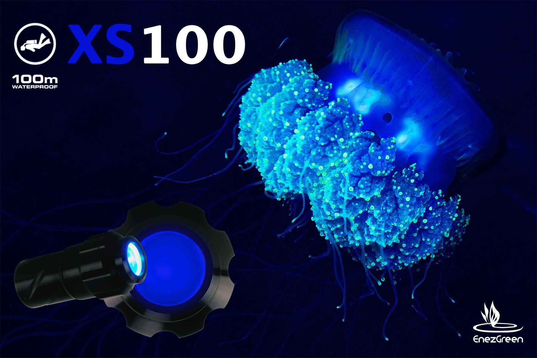 Mini lampe torche xs100 lampe plongée sous marine